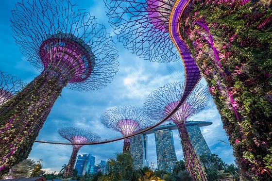 singapore-city-skyline-560X373