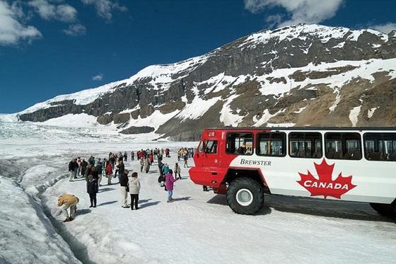 Canada_Icefields_Ice Explorer_560x373