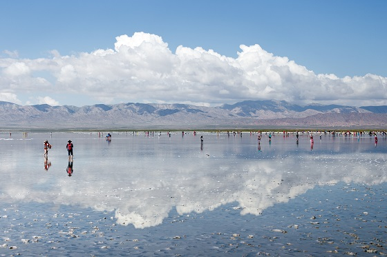 China_Caka Salt Lake_560x373