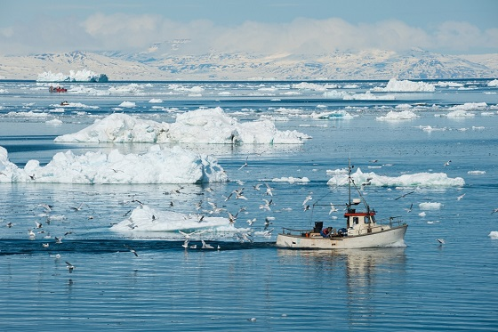 Greenland_Eql Sermia Glacier_560X373