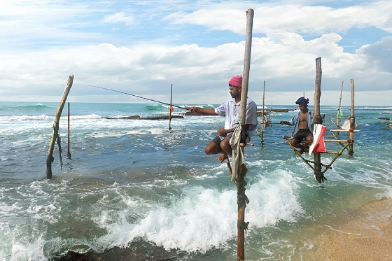 Sri Lanka_Yala_Stilt Fishing1_560X373