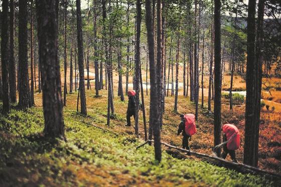 Finland_MEK-UKK-DAY-(560X373)