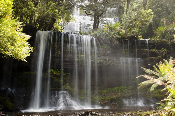 Australia_Mt. Field National Park3_560X373