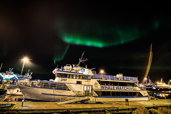 Special Tours - Northern Lights by Boat (28)
